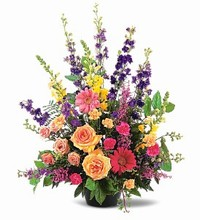 Sympathy Arrangement  ($60 to $310)