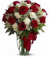 Amour Infini -  Roses à Longues Tiges Haut de gamme