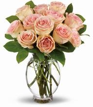 Bouquet  «Délicate Douzaine» <br>de Téléflora