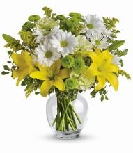 Le «Floraison Lumineuse»