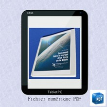 Comment faire le survol d'un livre de la Bible / Cours et corrigés - numérique PDF