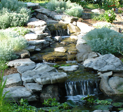 Pond Tips, Information & Product Selection Guide