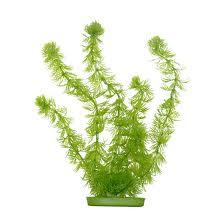Plastic Plants
