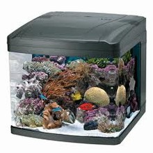 Aquarium Kits & Cabinets