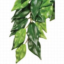 Exo Terra Ficus - Silk- Large