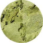 Zeigler® Specialty Flakes - Spirulina- 2.27kg (5 lb)