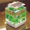 Digital Nano Aquarium LED Light - 10 Watt
