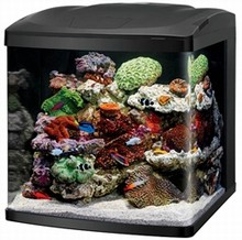 Coralife Biocube 16 Gallon - With LED Lighting