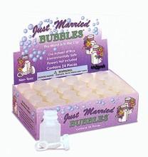 Bubbles Box of 24