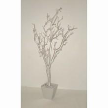 3'  Silver Tree
