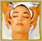Étude de la peau (physiologie et anatomie)