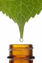 Séminaire aromathérapie scientifique : traitements complémentaires à l'aromathérapie
