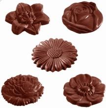 CW1416 Moule Chocolat