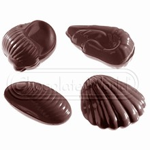 CW2332 Moule Chocolat