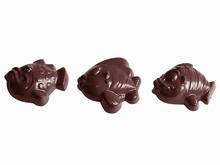 CW1506 Chocolate Mold