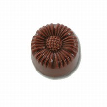 X560 Chocolate Mold