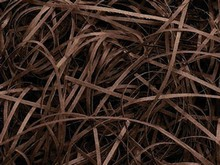 sh339 Fine Paper Shred Chocolate Brown