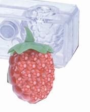 c3002 3D Magnetic Mold - Raspberries