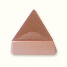 x602 moule chocolat