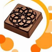 drc1759 moule chocolat