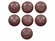 cw1615 chocolate mold