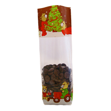 Teddy Bear Christmas Cello Bag
