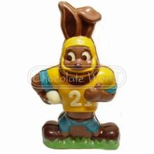 H2051c pvc mold football Easter bunny