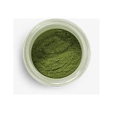 hs2036 hybrid sparkle dust khaki green
