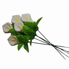 30dz tiges florales promotion