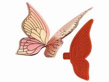 01063 2 Moyennes ailes larges de papillon