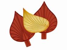 01054 Deux moyennes feuilles larges
