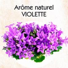 Arôme naturel violette