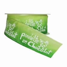 r861 Poulette en chocolat ombré vert