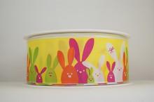 RP636 Yellow bunny parade