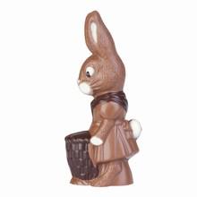 HB0141 miss rabbit