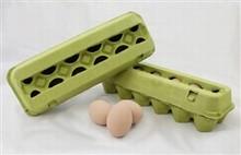Egg12cr lime egg carton 2x6