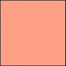 r795 Cantaloup ribbon