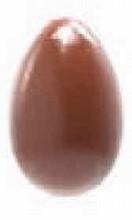 CW1910 Egg