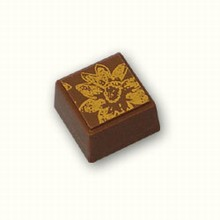 ax1114 Square Chocolate Mold